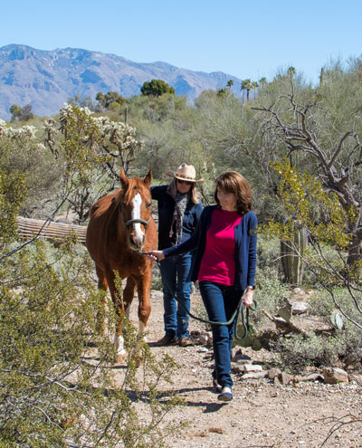 Cottonwood Tucson desert trail - equine assisted therapy - co-occurring disorders treatment