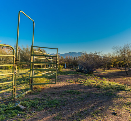 blue skies and metal gate - horse pen