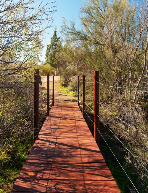 red wooden bridge on nature trail - Cottonwood Tucson behavioral health and addiction treatment