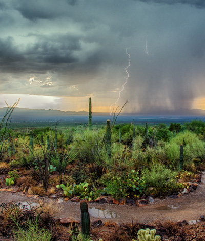 Arizona desert thunderstorm - exercise addiction